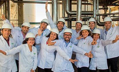 Grupo de colaboradores de Alianza Team