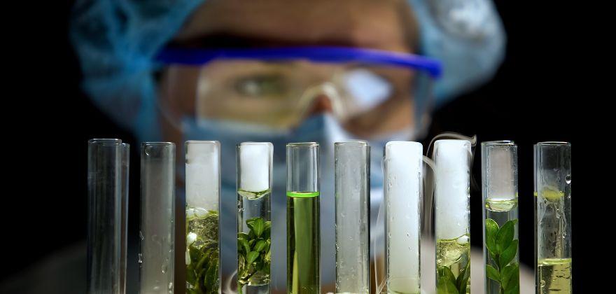 Conservación de alimentos: la innovación fortalece la calidad